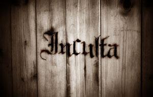 Логотип группы Inculta